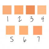 Polvo-Compacto-Regular-Colores